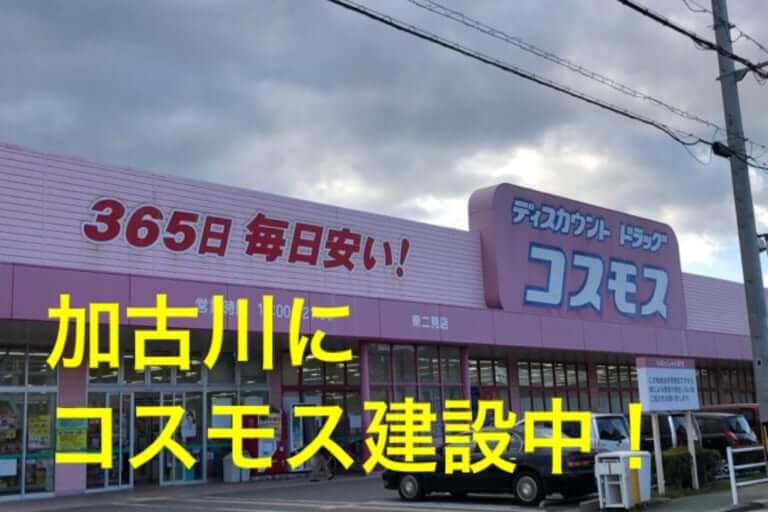 【加古川市】嬉しいお知らせ!ついに加古川にコスモスがやってきます!