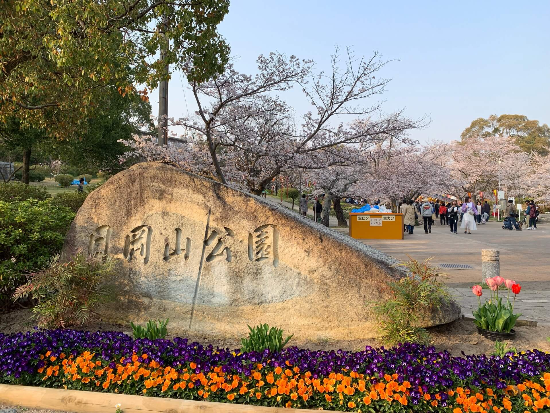 日岡山公園の桜の時期